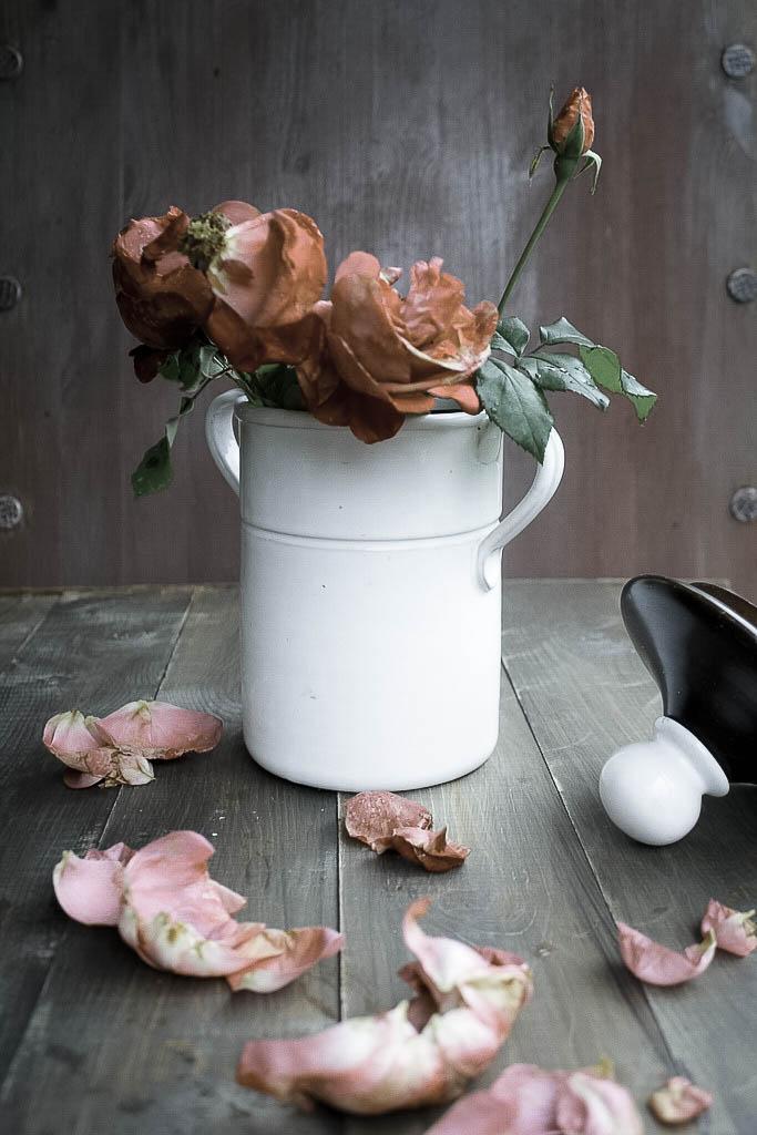 rose autunno